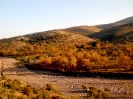 Beni Snassen - Oriental marocain_10