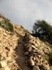 Beni Snassen - Oriental marocain_22